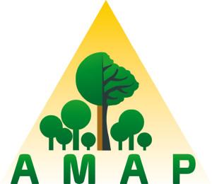 Logo_AMAP_UMR