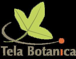 Tela Botanica Logo