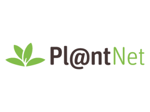 plantnet-01