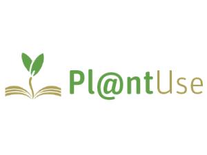 plantuse-01